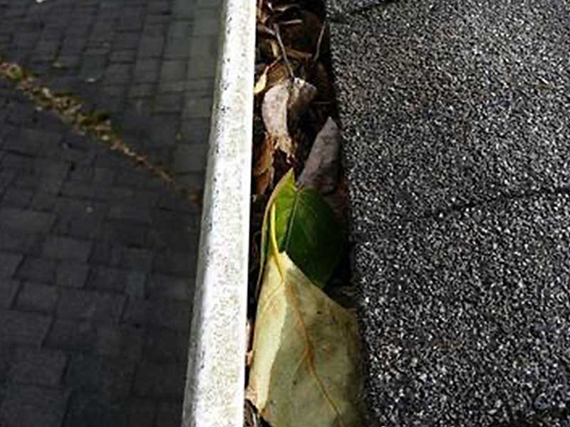 The gutters were clogged with leaves and debris in University Place