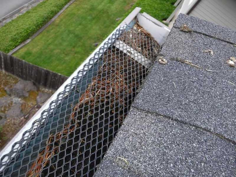 Area of the home with the DIY gutter system, note how full the gutters are with the gutter shield on.