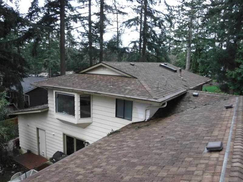 This is a dirt simple roof, but gutter helmet can't handle the fir needles.