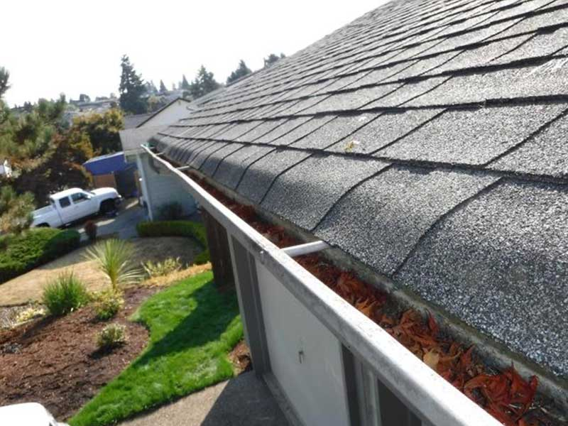 Gutters full of leaves and debris in Spanaway, WA.