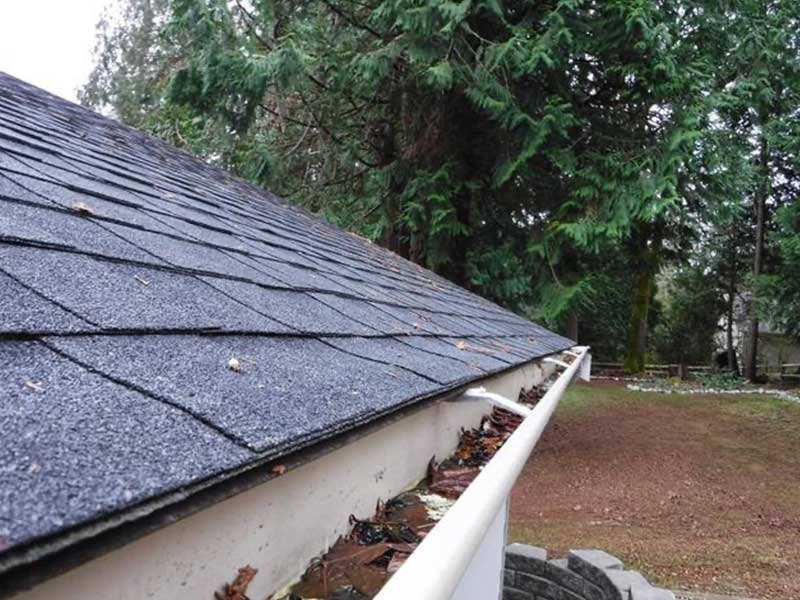 Leaves and debris fill the gutters
