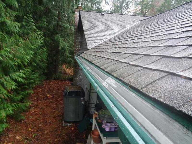 The roof in Anacortes, WA has been blown clean and the new gutters and MasterShield have been installed.
