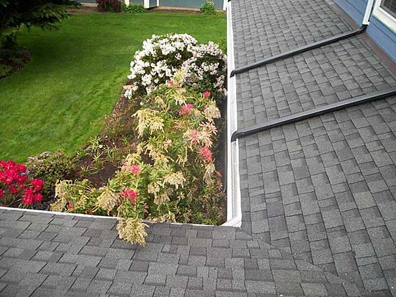 Two new tie-ins will insure that moss, algae, and mold will no longer grow on this clients roof. As you can see, they now drain all the rain water from the top gutters directly into the lower gutters.