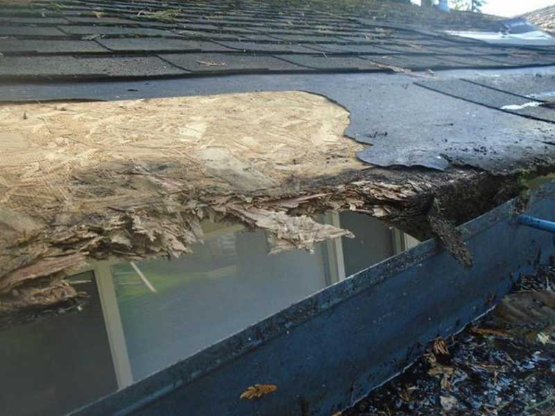 After we took off the old gutter we peeled some of the roof back to get a better look.