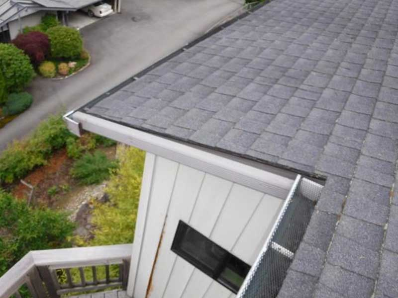 Open gutters in Kenmore not protected by anything.