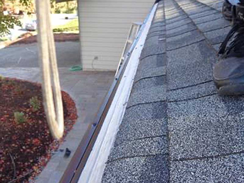 The roof has been trimmed and the MasterShield is in place read to keep out the leaves and debris.