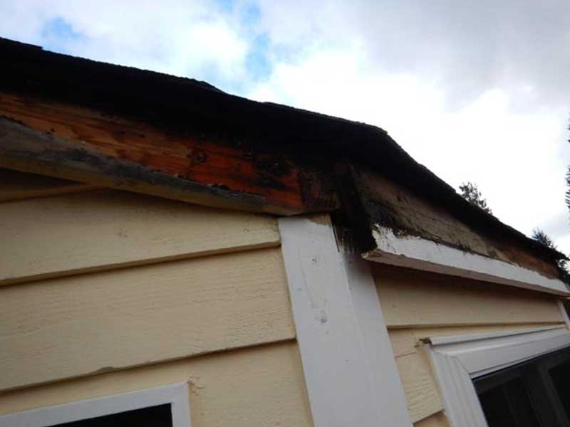 Rotted fascia needs replacement after water damage