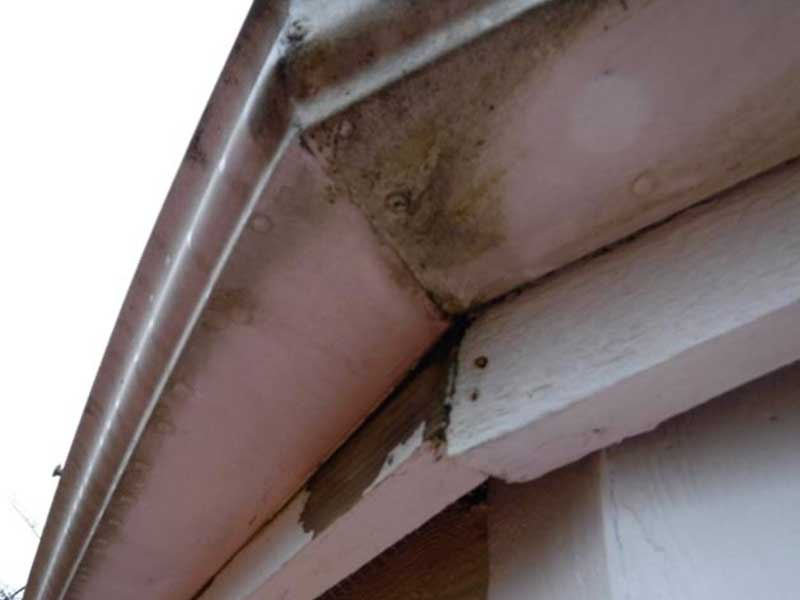 Rotten fascia and gutter damage due to DIY gutter protection installed in Maple Valley, WA