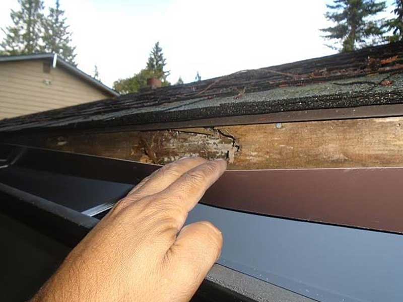 More rotten fascia on the Everett roof